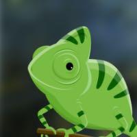 Nono le caméléon